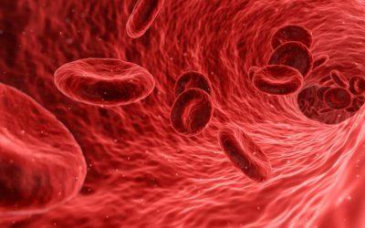 Anleitung: Blutgruppendiät